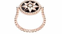 Dior gioielli 2016: la collezione Rose des vents, il nuovo video animato