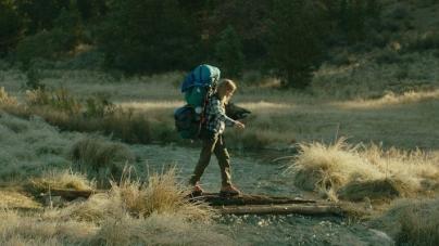 Wild, la recensione del film più selvaggio sugli schermi