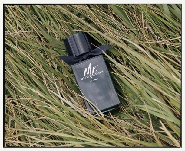Mr. Burberry Indigo profumo: la nuova fragranza maschile, il video della campagna