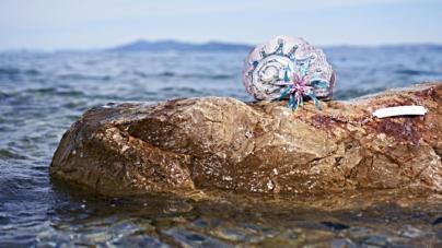 Braccialini borse primavera estate 2019: la Wonder's Cruise, esotica e marinaresca