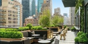 AC Hotel by Marriott New York Times Square: stile urbano, elementi classici e la rooftop lounge