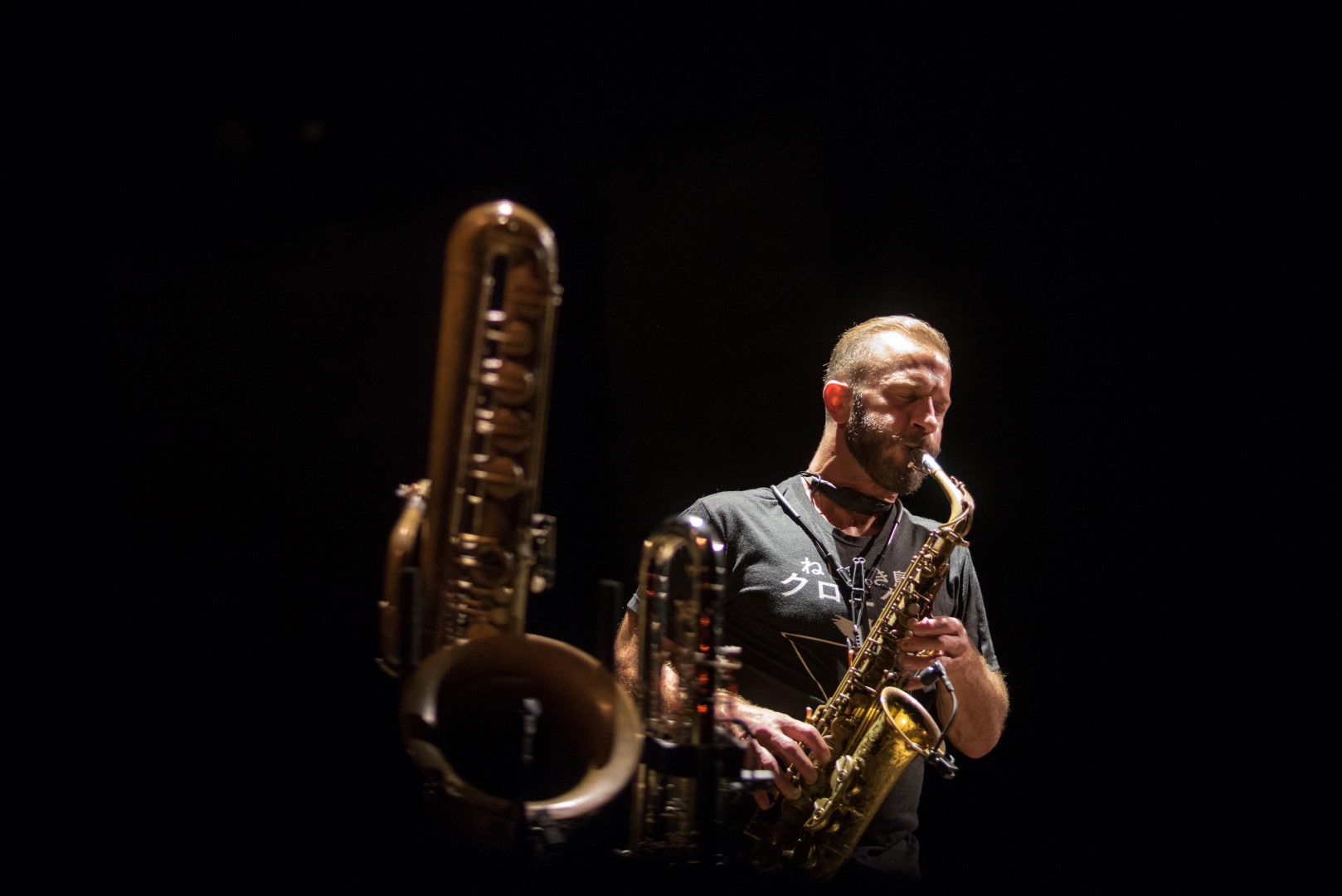 JazzMi concerti 2018 Hamilton