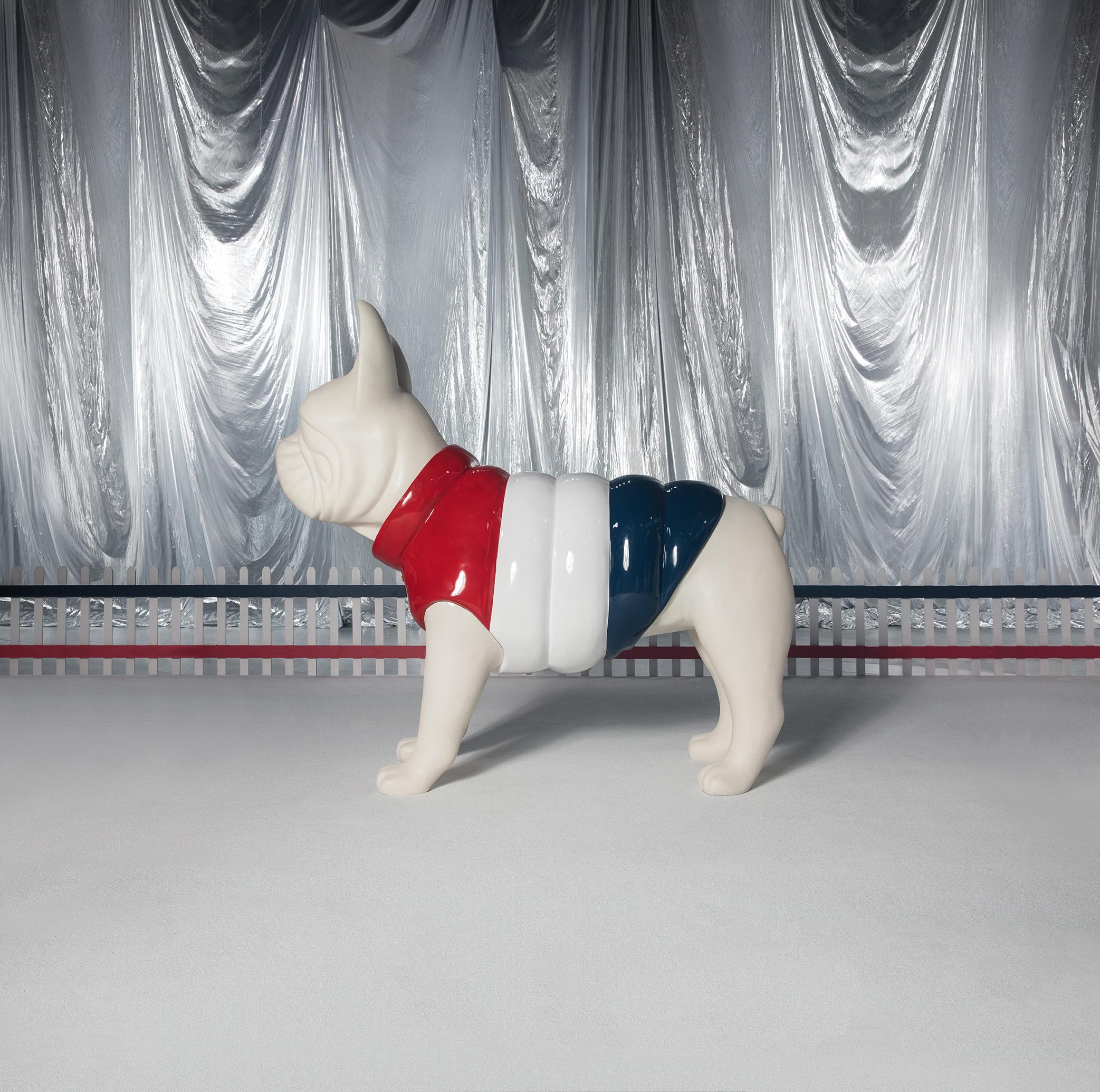 Moncler Poldo Dog Couture