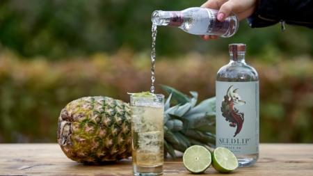 Cocktail ultime tendenze 2019: il futuro dei drinks
