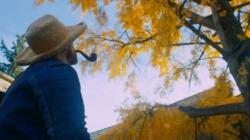 Van Gogh film 2019: l'intensità febbrile della sua arte