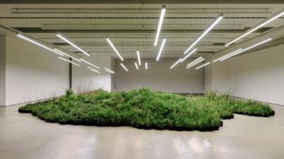 "Fuorisalone 2019 Jil Sander: l'installazione green ""Adjacent Field"" di Linda Tegg"