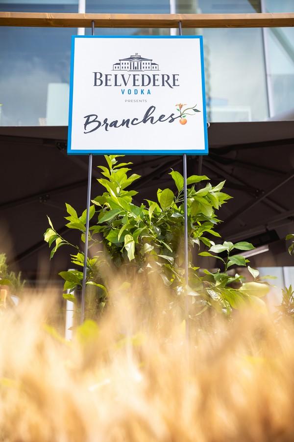 Belvedere Branches Pandenus Milano