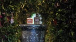Valentino Born in Roma: le nuove fragranze, il party con Gwyneth Paltrow