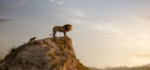 Il Re Leone 2019: un viaggio nella savana africana dove è nato un futuro re