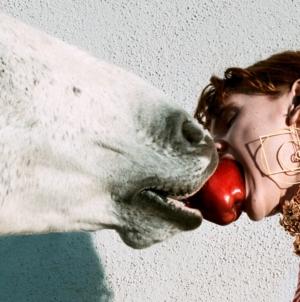 Gucci campagna primavera estate 2020: #OfCourseAHorse, il surrealismo quotidiano