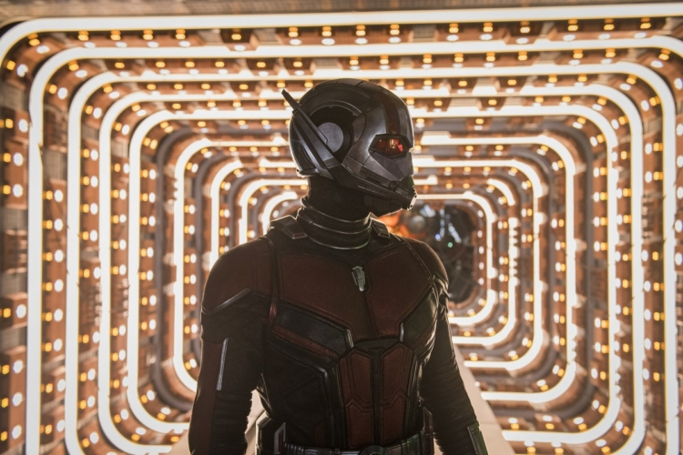 Ant Man and The Wasp Disney+: in streaming il nuovo capitolo dell'universo Marvel