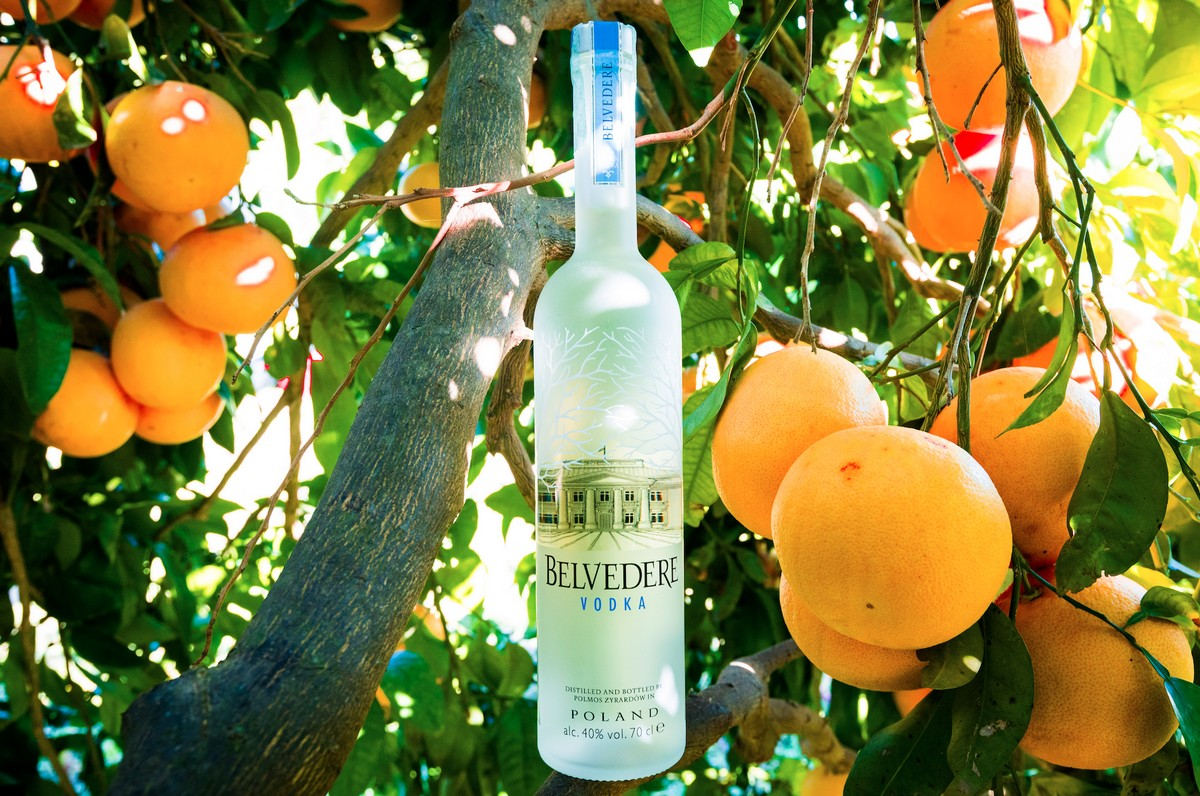 Screwdriver cocktail Belvedere Vodka
