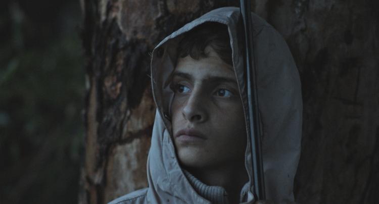 Notturno Festival Cinema Venezia 2020