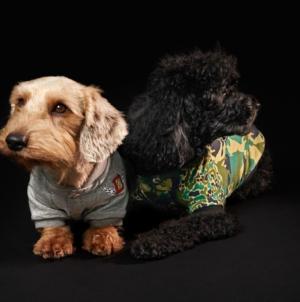Diesel Petwear collezione 2021: la nuova Doggies Collection per gli amici a quattro zampe