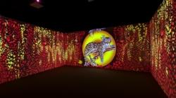 Ferragamo Museo mostra Seta: il foulard, il racconto espositivo del ricco archivio della Maison