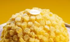Marchesi 1824 Festa della Donna 2021: i dolci speciali ispirati ai fiori di Mimosa