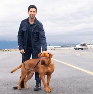 Turner e il Casinaro serie tv: la nuova serie originale con Josh Peck e Carra Patterson, il trailer